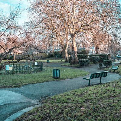 Enjoy a sunny walk in High Elms Park